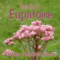 Teinture Eupatoire