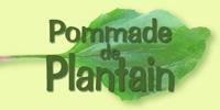 Pommade Plantain