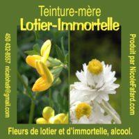 Teinture Lotier-Immortelle